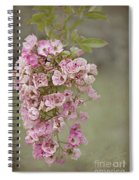 Raelene Spiral Notebook