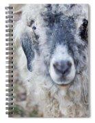 Raggedy Goat Spiral Notebook