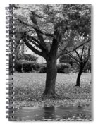 Rain And Leaf Ave In Black And White Spiral Notebook