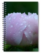 Rain Comes Softly Spiral Notebook