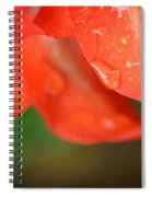 Rain Dance - Red Flower Photography By Sharon Cummings Spiral Notebook