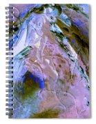 Rain Dancer Spiral Notebook
