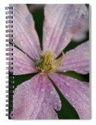 Rain Drops From Heaven Spiral Notebook