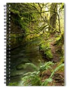 Rain Forest 2 Spiral Notebook
