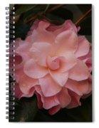 Rain Kissed Camellia Spiral Notebook