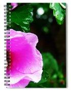 Rain Kissed Flower Spiral Notebook
