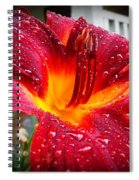 Rain Kissed Lilly Profile 1 Spiral Notebook