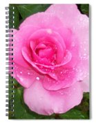 Rain Kissed Rose Spiral Notebook