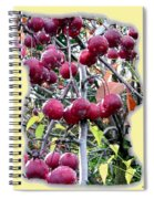 Rain On The Crab Apples Spiral Notebook