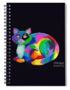 Rainbow Calico Spiral Notebook