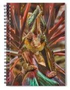 Rainbow Chameleon Spiral Notebook