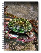 Rainbow Crab Spiral Notebook