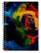 Rainbow Ecstasy Spiral Notebook