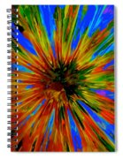 Rainbow Exuberance Spiral Notebook