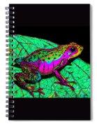 Rainbow Frog 3 Spiral Notebook
