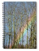 Rainbow Hiding Behind The Trees Spiral Notebook