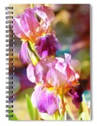 Rainbow Irises Spiral Notebook