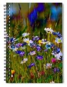 Rainbow Meadow Spiral Notebook