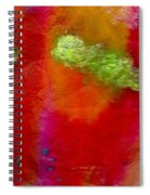 Rainbow Passion Spiral Notebook