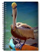 Rainbow Pelican Spiral Notebook