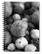 Rainbow Peppercorn Macro Black And White Spiral Notebook