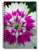 Rainbow Pink Flower Spiral Notebook