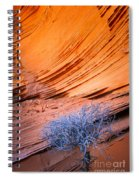 Rainbow Rocks Dead Bush #1 Spiral Notebook