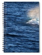 Rainbow Spout Spiral Notebook