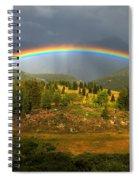 Rainbow Through The Forest Spiral Notebook