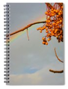 Rainbow Through Tree Spiral Notebook
