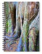 Rainbow Tree Spiral Notebook