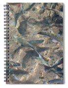 Rainbow Trout Art Prints Canvas Framed Spiral Notebook