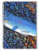 Rainbow Trout Dry Fly Reel Poster Image Spiral Notebook