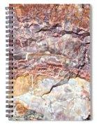 Rainbow Wood Spiral Notebook