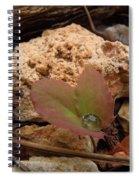 Raindrop Jewel Spiral Notebook