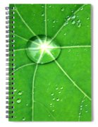 Raindrop Junction Spiral Notebook