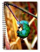 Raindrop Magnifies Spiral Notebook