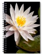 Raindrop Water Lilly Spiral Notebook