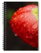 Raindrops And Poppy Spiral Notebook