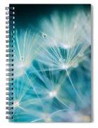 Raindrops On Dandelion Sea Blue Spiral Notebook