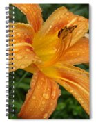 Raindrops On Golden Lily Spiral Notebook