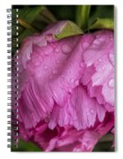 Raindrops On Peony Spiral Notebook