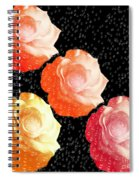 Raindrops On Roses - My Favorite Things Spiral Notebook