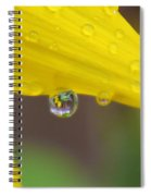 Reflection In The Rain Spiral Notebook