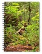 Rainforest Green Everywhere Spiral Notebook