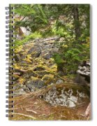 Rainforest Rock Slide Spiral Notebook