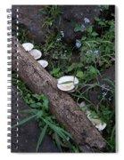 Rainforest Vegetation Moss And Fungi Spiral Notebook