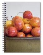 Rainier Cherries And Ceramic Bowl Spiral Notebook