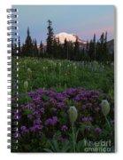 Rainier Pastel Dawn Spiral Notebook