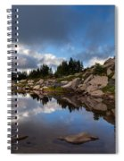 Rainier Spray Park Reflection Spiral Notebook